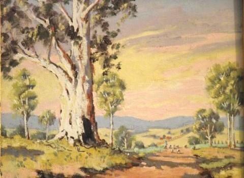 Morning Light - Tamworth